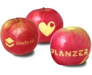 Werbemittel Apfel